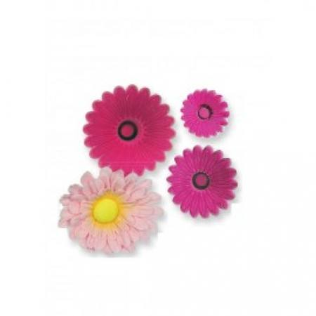 Daisy Gerbera, Multi Petal - Set of 6